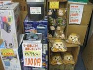 og_akiba0212_004.jpg