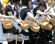 og_akibau_005.jpg
