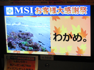 og_akibamsi_008.jpg