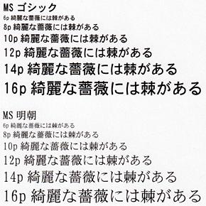 tm_1006c530dn_18.jpg