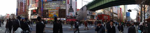 og_akiba2_011.jpg