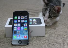 og_apple14_001.jpg