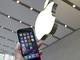 新型「iPhone」発売、アップルストア表参道に1000人を超える行列