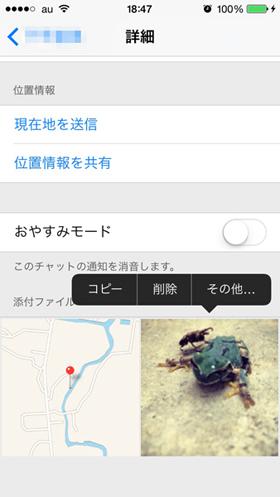 og_apple73_002.jpg