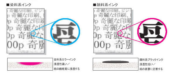 tm_1501_IJP1_a.jpg