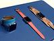 Apple新製品のすべて:「Apple Watch」を林信行が読み解く——watchOS 2とHERMESでリードを広げる