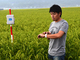 「Apple Watch」でコメ作り——熊本・阿蘇の若手農家が取り組む「スマート農業」の可能性