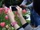 iPhoneのカメラで簡単キレイに思い出を残す