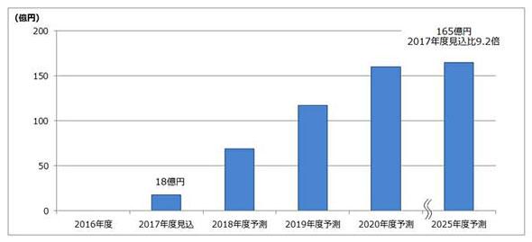 Fuji Keizai Report