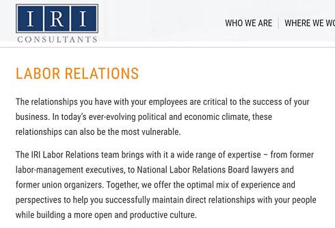 IRI Consultants