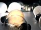 次世代照明が第2の普及期へ、LED蛍光灯と有機EL照明が主役に