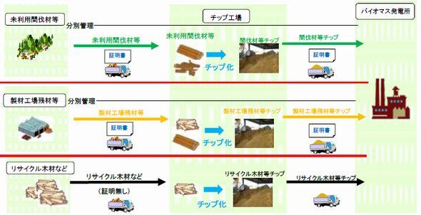 enecho_biomas_trace.jpg