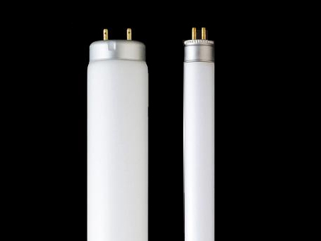 T5_Fluorescent_Lamp_1.jpg