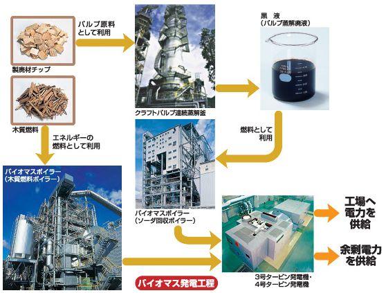 hyogopulp_biomas.jpg