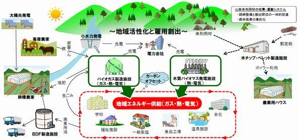 biomas2.jpg
