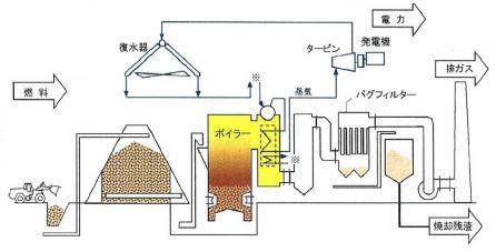 fukushima_biomas.jpg