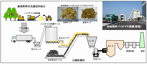 misumi_biomas.jpg