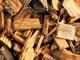 「20万トン」の未利用材を有効利用、王子が北海道で木質バイオマス発電