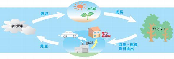 再生可能エネルギーの現実(5):バイオマス発電の3つの課題−燃料調達、分別、CO2−