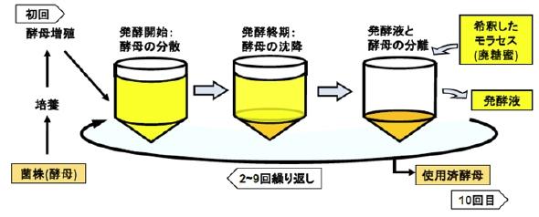 yh20130826NEDO_ferment_590px.jpg