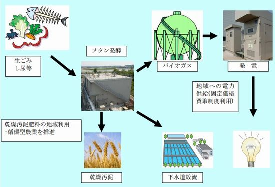 oobu_biomas1_sj.jpg