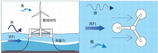 fukushima28_sj.jpg