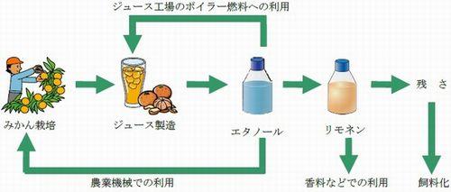 orange_biomas2.jpg