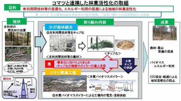 ishikawa_biomas_sj.jpg