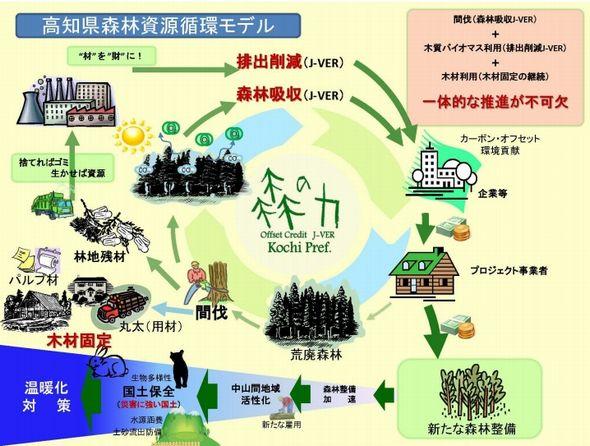 kochi_biomas2_sj.jpg