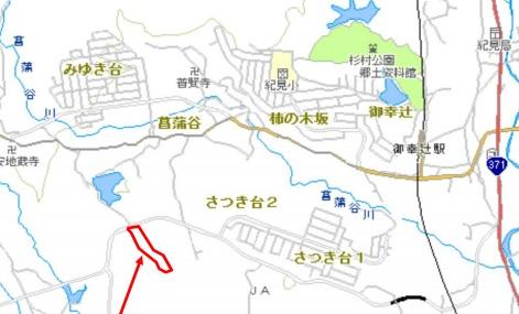 hashimoto_solar2_sj.jpg