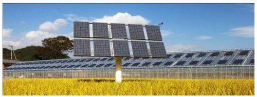 solarsharing3_sj.jpg