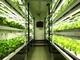 小さな植物工場にもニーズあり、温泉熱や地下水熱を利用