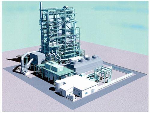 biomas1_sj.jpg