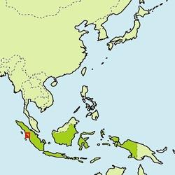 yh20140716Toshiba_map_250px.jpg