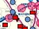 埼玉県が狙う電気自動車、県内に充電器を1069基設置