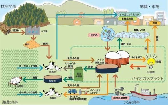 biomas_betsukai_sj.jpg