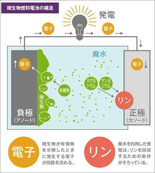 yh20141203Gifu_MFC_500px.jpg