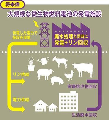 yh20141203Gifu_cycle_370px.jpg