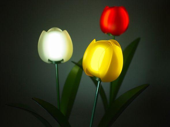 yh20150105OLED_tulip_590px.jpg