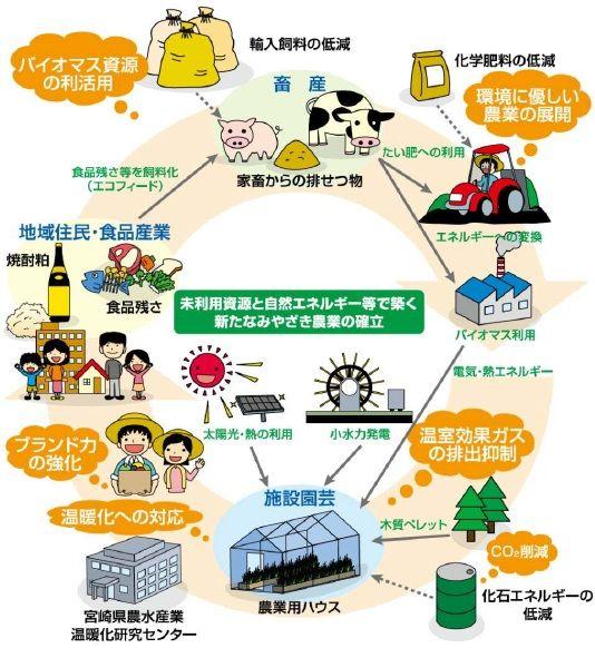 biomas.jpg