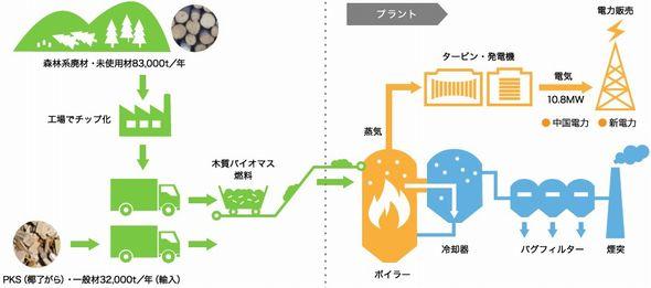 goutsu_biomas3_sj.jpg