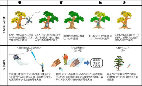 rk_150624_nagano02.jpg