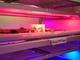 人工知能で野菜を栽培する時代へ、クラウドでLEDを自動制御する植物工場が稼働