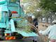 配電設備の保守から生まれる伐採樹木、産廃にせず木質バイオマスに