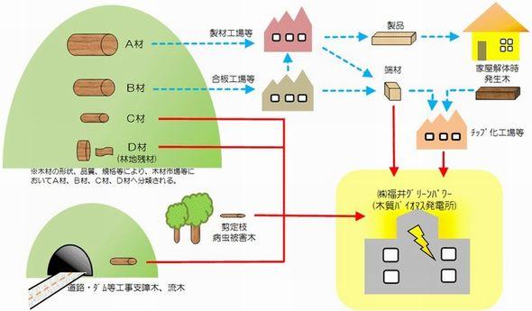fukui_greenpower1.jpg