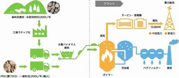goutsu_biomas2.jpg