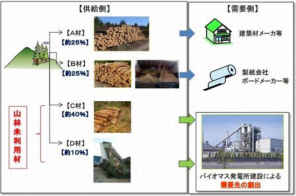 yonezawa3_sj.jpg