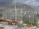 地熱温水でピーマンが育つ、豪雪地帯でも周年農業を実現
