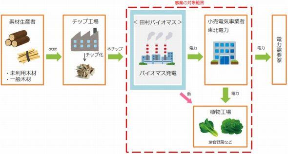 tamura_biomas0_sj.jpg