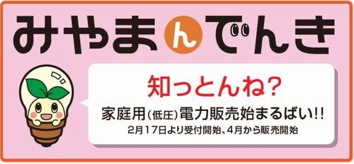 miyama_denki0_sj.jpg
